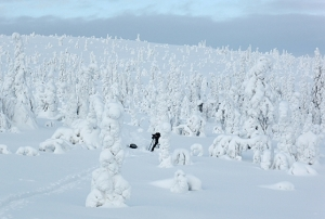 In Riisitunturi National Park, Finland. (Photo by Francesco Figari)