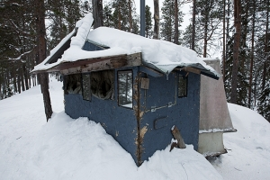 In Hannu Hautala's shed, taking photos of woodpeckers in the Arctic Circle.