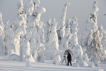 Riisitunturi National Park, Finland. (Photo by Roberto Mazzagatti)