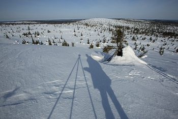 On the hills of Riisitunturi, Finland.