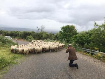 Street encounters in the inland of Sardinia (Italy) (Photo by Mario Pinoli)