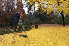 Autumn in the Public Gardens of Milan.