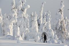 Risitunturi National Park, Finland. (Photo by Roberto Mazzagatti)