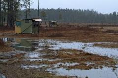 Shed for photographing bears on the Finnish-Russian border.