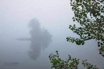 FIN0720_0831_Early morning fog (Finland)
