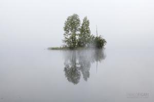 SII0813_0121_Morning fog (Finland)
