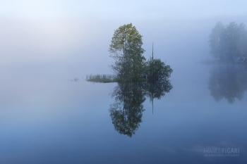 SII0615_0124_Peace (Finland)
