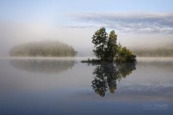 SII0818_0126_Reflexes (Finland)