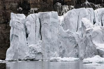 FJL0819_0631_Glaciers in Smith Bay on George Land (Franz Josef Land, Russia)