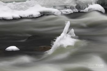 FIN0219_0167_Kitkanjoki river in Oulanka National Park (Finland)