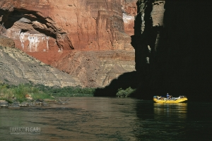 ARI1007_0179_Expedition on the Colorado River through the Grand Canyon (Arizona, USA)