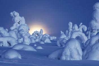 METAMORFOSI - Alba, tramonto della luna