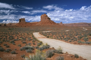 USA1007_0266_Valley of the Gods (Utah, USA)