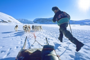 GRO0401_0310_Expedition with sled dogs (Greenland)