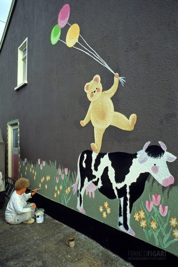 IRL0304_0321_Painting home (ireland)