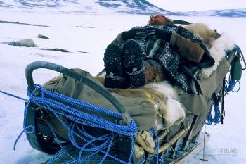NOR0304_0326_Sleddog musher resting (Norway)