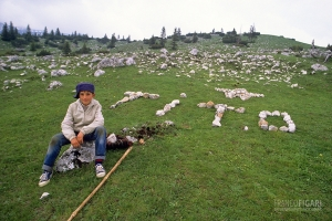 MON0789_0335_Young shepherd (Montenegro)