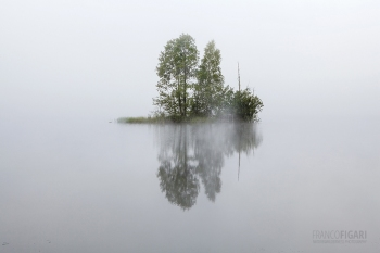 SII0813_0121_MORNING FOG (FINLAND)