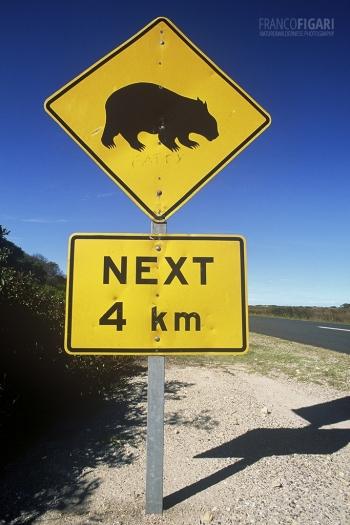 AUS0203_0698_Beware of the wombat (Australia)