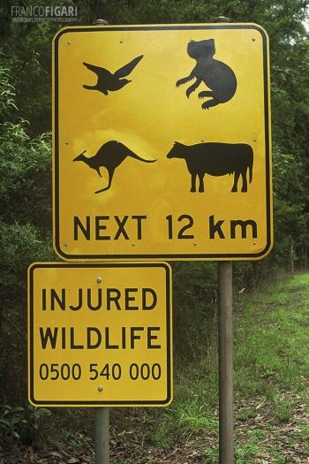 AUS0203_0721_Beware of wildlife (Australia)