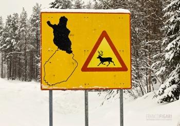 LAP0315_0685_Beware of reindeer (Finland)