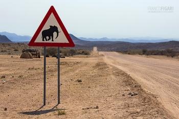 NAM0815_0686_Beware of the elephant (Namibia)