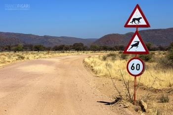 NAM0815_0709_Beware of the cheetah and the kudu (Namibia)