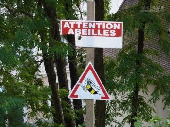 P103086_0720_Beware of bees (Montmatre, Paris, France)