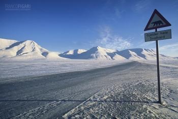 SVA0404_0683_Beware of the polar bear (Svalbard)
