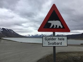 SVA0719_0705_Beware of the polar bear (Svalbard)