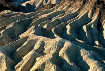 CAL1099_0748_Zabriskie Point  (Death Valley, California, USA)