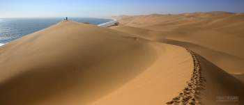 NAM0815_0200_ Skeleton Coast (Namibia)