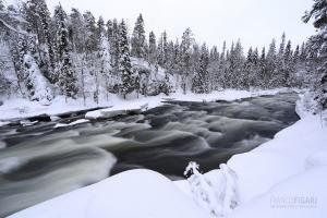 FIN0214_0353_Kitkajoki river in Oulanka National Park (Northern Finland)