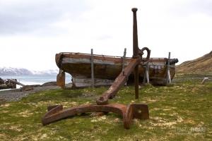 SGE1109_0390_Grytviken Bay where explorer Shackleton is buried (South Georgia)