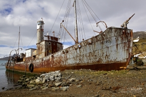 SGE1109_0395_Old rusted whaler in Grytviken Bay (South Georgia)