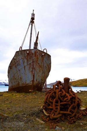 SGE1109_0403_Wreck in Grytviken Bay (South Georgia)