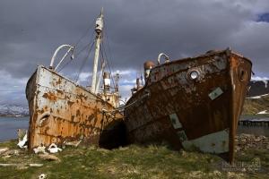 SGE1109_0406_Wrecks in Grytviken Bay (South Georgia)