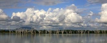 TAN0109_0421_Selous Game Reserve (Tanzania)