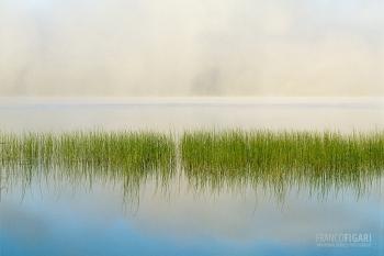 FIN0800_439_Morning mist (Finland)