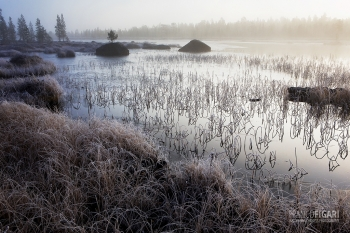 FIN1014_448_The first winter frosts (Finland)