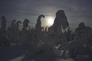 RII0215_0530_Moon rising (Riisitunturi National Park, Finland)